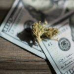 Investing in the 2018 Cannabis Market