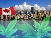 Cannabis Sales In Canada Are Expected To Pass $7 Billion In 2019