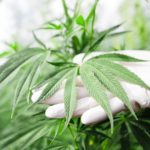 The First Marijuana-Derived Drug and a New Entry for Most Creative Commute! 3 Things to Know Today.