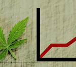 Cannabis Market Continues to Produce Promising Businesses & Marijuana Stocks