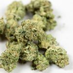 Decriminalization in New Jersey, Legalization Efforts in Pennsylvania: Week in Review