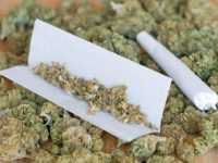 New York Report Concludes That Recreational Marijuana Should Be Legalized