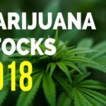 What Is The Current State of The Marijuana Industry