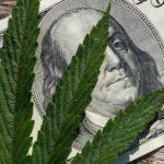 Marijuana Stocks Newsletter – Friday August 17, 2018