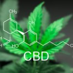 Nebraska Cannabidiol Oil Study Report Shows Benefit to Patients