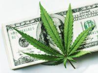 Marijuana Stocks Newsletter – October 11, 2018