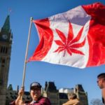 Cannabis in Canada: Big banks are missing a boom