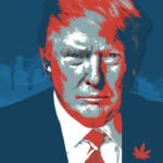 Trump is setting the stage for cannabis legalization after midterms