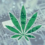Marijuana Stocks Newsletter – November 2, 2018