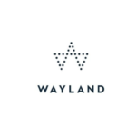 Wayland Group to Explore Strategic Alternatives to Maximize Shareholder Value Including the Spinout and/or European Listing of its International Assets