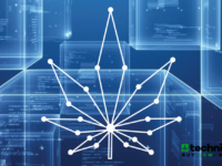 Namaste Announces Binding Agreement to Acquire an Additional 34% Equity in Pineapple Express Delivery for 49% Total Ownership