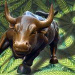 Marijuana Stocks Newsletter – Friday Morning Update – January 11, 2019