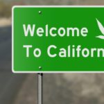 California's Cannabis Legalization: Where are we now?