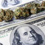 """Happy """"FriYAY"""" from Marijuana Stocks – Let's Finish Strong!"""