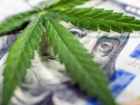 Tertiary Marijuana Stocks Shock Investors With Their Value