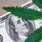 Mainstream Marijuana Stocks Are Not the Only Bet