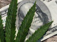 Alternative Marijuana Stocks Continue to Show Why They're So Popular