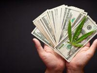 Marijuana Stocks Begin to Shape Back Up As We Enter Second Half of April