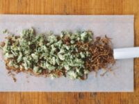 Impact of Cannabis and Tobacco On Young Adults
