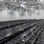 1933 Industries Moves into New Cannabis Cultivation Facility with Receipt of Occupancy Permit and Completes 5x Expansion Capacity