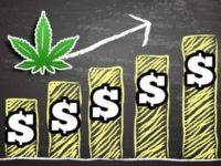 Is This Marijuana Stock On The Rebound