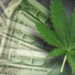 How Michigan is Choosing to Legalize Marijuana