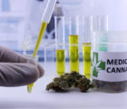 TerrAscend Corp (OTCMKTS:TRSSF) Signs Agreement To Purchase Ilera Healthcare