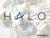 Halo Labs Reports Q3 2019 Financial Results