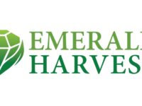 Emerald Harvest Opens Doors, Makes Sanitizer to Fight Pandemic