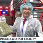 A look inside the facility of an Ontario Cannabis Store supplier