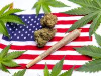 Cannabis and CBD Stocks on Election Watch (YCBD, CBGL, MJNA)