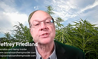 Jeffrey Friedland's predictions for the cannabis, hemp, and CBD industries for 2021 and beyond