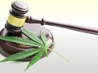 Is Cannabis Testing Workplace Discrimination?