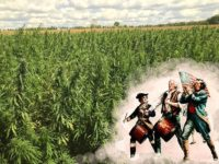 Cannabis History in Colonial times: Hemp Monument