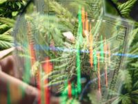 Are Marijuana Penny Stocks A Buy Right Now? 2 For Your Watchlist