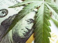 Money With Marijuana Leaf Close Up High Quality