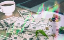 Looking For Marijuana Stocks To Buy In April? Here's 2 To Watch This Week