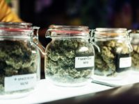 Oceanside council removes 'medical-only' cannabis restrictions