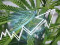 Top Cannabis Researcher Ups 2022 U.S. Forecast To $30 Billion Due To More Markets Legalizing