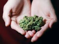 What can readers take away from Cannabis and the Christian?