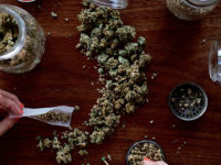 Cannabis SM